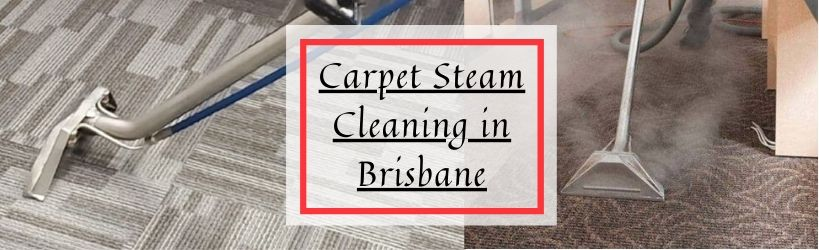 Carpet Steam Cleaning in Brisbane