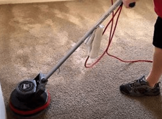 Affordable Carpet Steam Cleaning Service Newstead