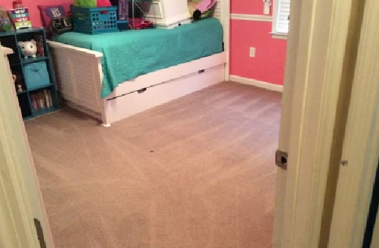 Carpet Cleaning Service Springfield Lakes