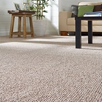 Carpet Disinfection Brisbane