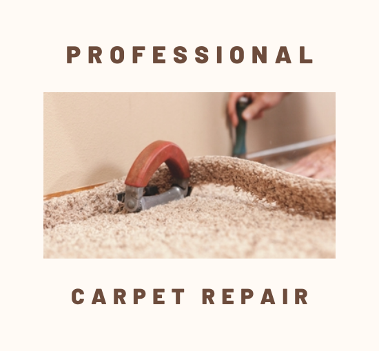 Professional-Carpet Cleaning