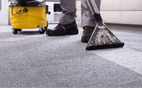 Carpet Cleaning Service Newstead
