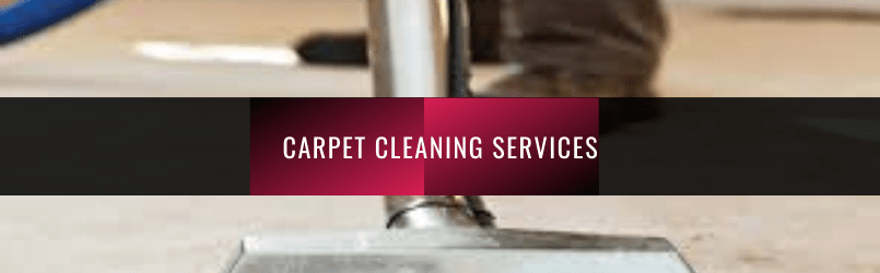 5 Reasons You'll Love Our Carpet Cleaning Service